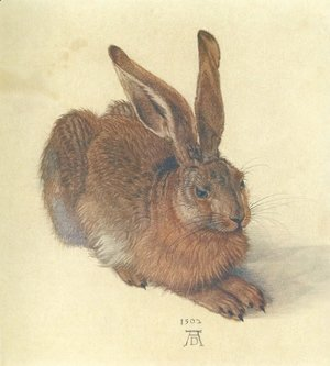 Young Hare I