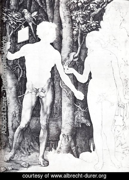 Albrecht Durer - Adam And Eve I