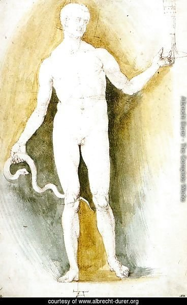 Male Nude with a Glass and Snake, so-called Asclepius