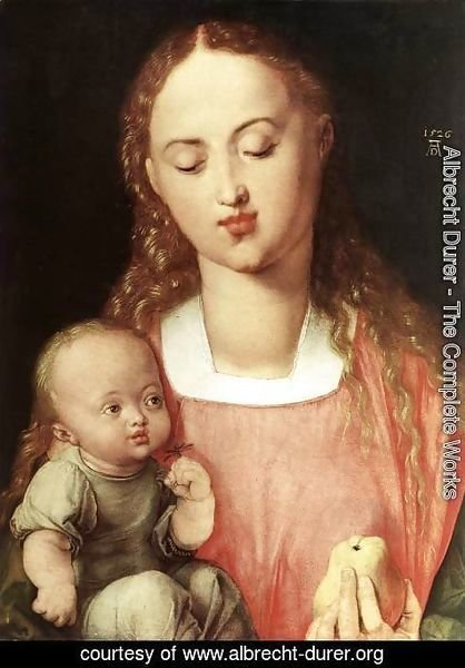 Albrecht Durer - Madonna and Child with the Pear 2