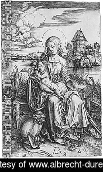 Albrecht Durer - Virgin and child 2