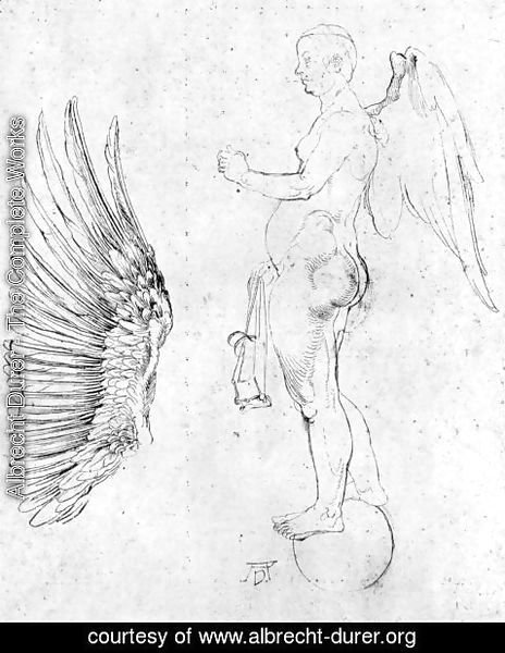 Albrecht Durer - Study to a large fortune