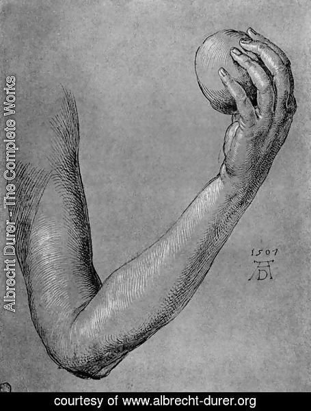 Albrecht Durer - Arm of Eve
