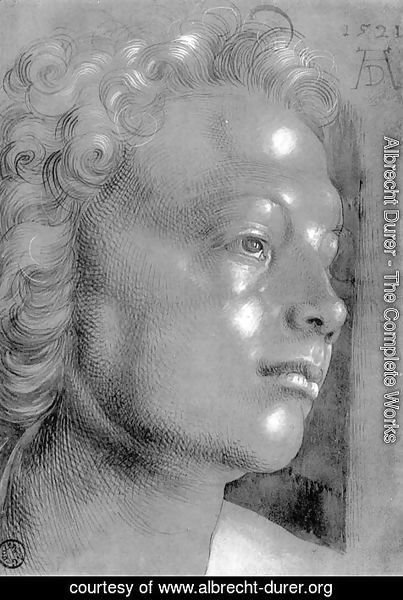 Albrecht Durer - Studies on a great picture of Mary   head with curly hair (angel)