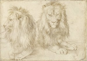 Albrecht Durer - Two seated lions