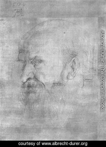 Albrecht Durer - Head of Paul