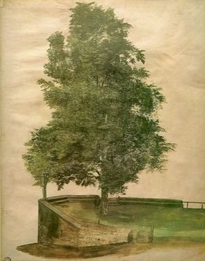 Albrecht Durer - Linden Tree on a Bastion