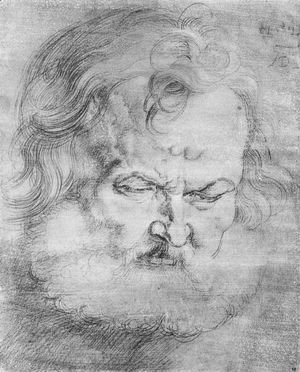 Albrecht Durer - Head of Peter