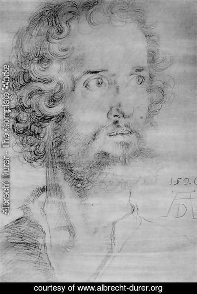 Albrecht Durer - Head Of St  Mark