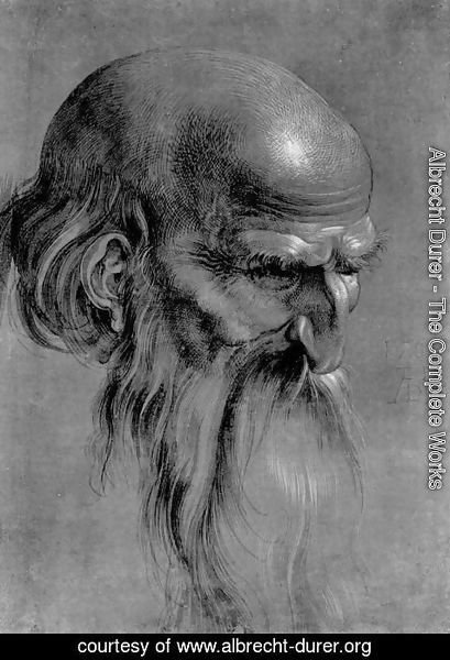 Albrecht Durer - Head Of An Apostle Looking Downward